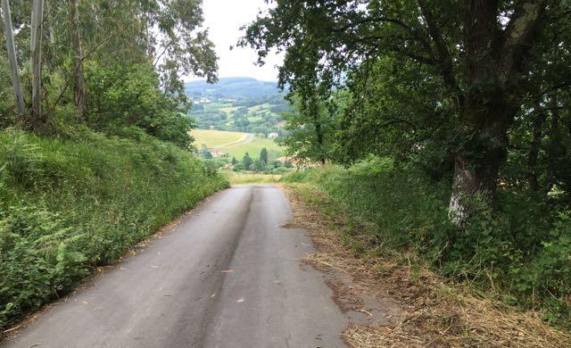 The road to healing chronic illness - Veronique Mead, Chronic Illness Trauma Studies blog