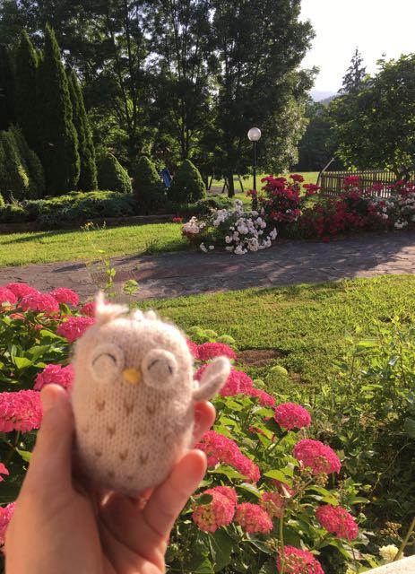The Owl and I - Veronique Mead, Chronic Illness Trauma Studies blog