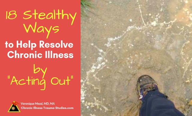 Resolve Chronic Illness by Acting Out and Healing Stuck States of Fight Flight Freeze Mead CITS
