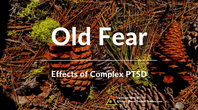 When fear happens in safe supportive relationships think of effects of complex PTSD and childhood trauma Mead CITS