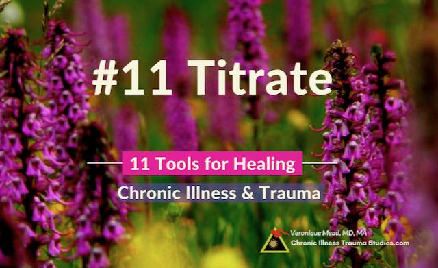 Healing Chronic Illness Titrate Less is More Mead CITS