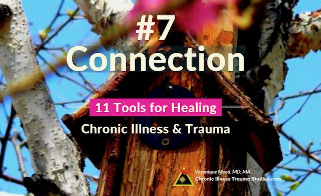 Healing Chronic Illness Connection Mead CITS