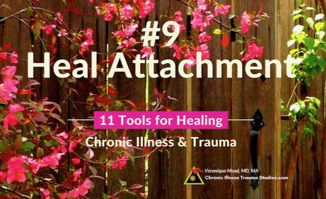 Healing Chronic Illness Heal Complex PTSD Mead CITS