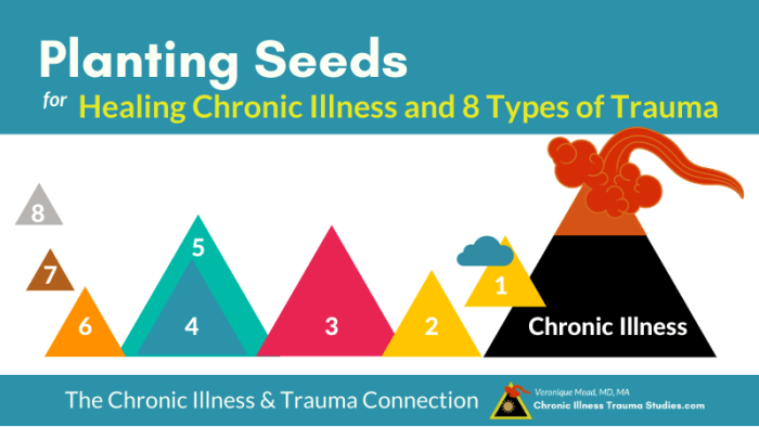 Planting Seeds for Healing 8 Categories of Trauma and Chronic Illness Mead CITS