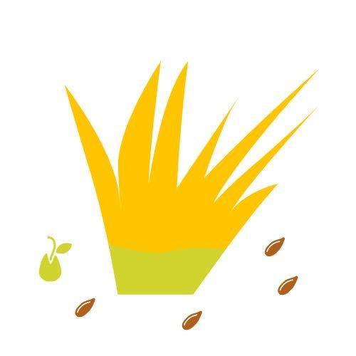AAEs Planting Seeds