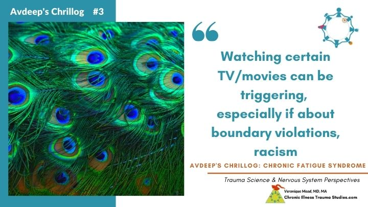 triggers and flares Avdeep's Chronic Fatigue Story racism Mead CITS
