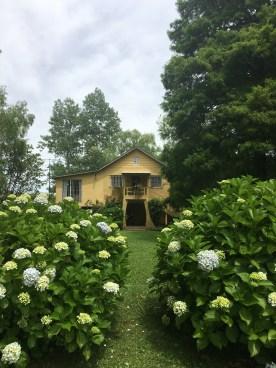 Silvia & Daniel's House