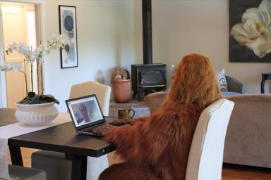 Daniel Oster as Bigfoot on Conference Call