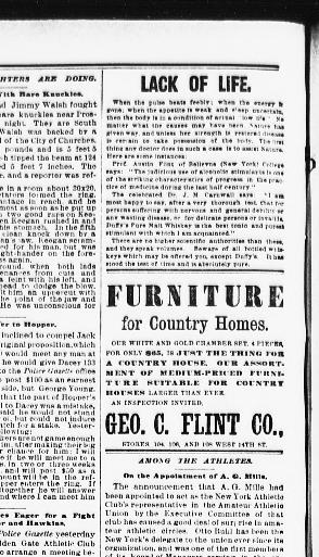 the sun new york n y 1833 1916 may 28 1889 page 6 image 6 chronicling america library of congress