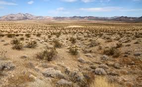 Le désert qui avance