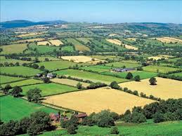 Protéger l'environnement avec une agriculture respectueuse.