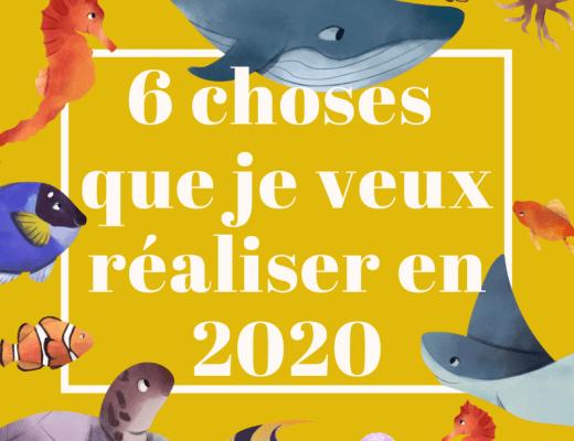 les choses que je veux faire en 2020