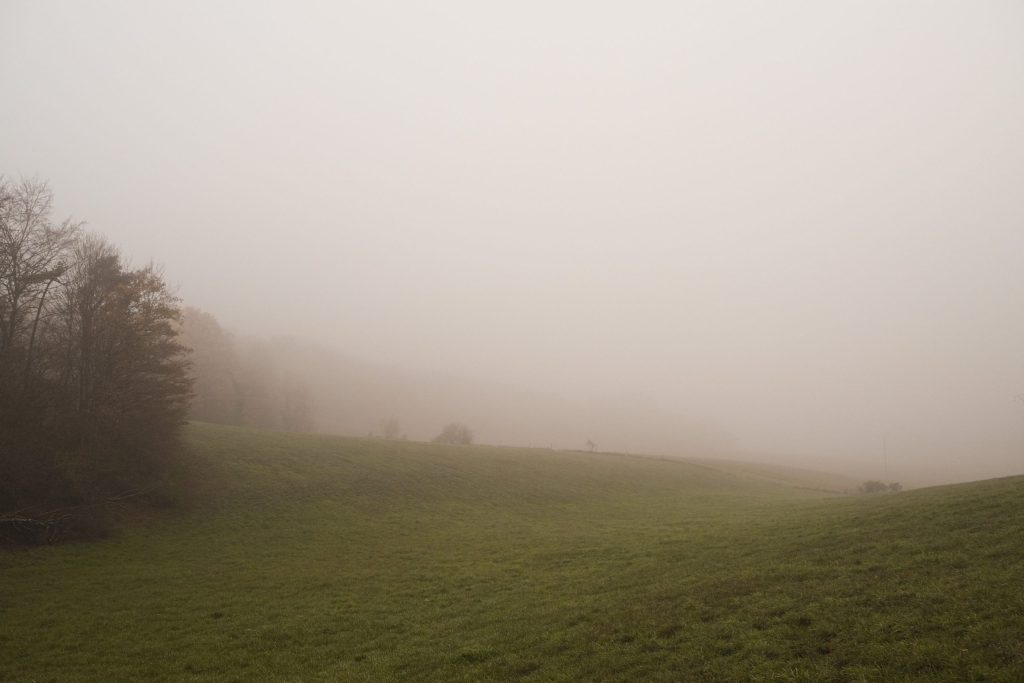 Dépression, brouillard, campagne, automne