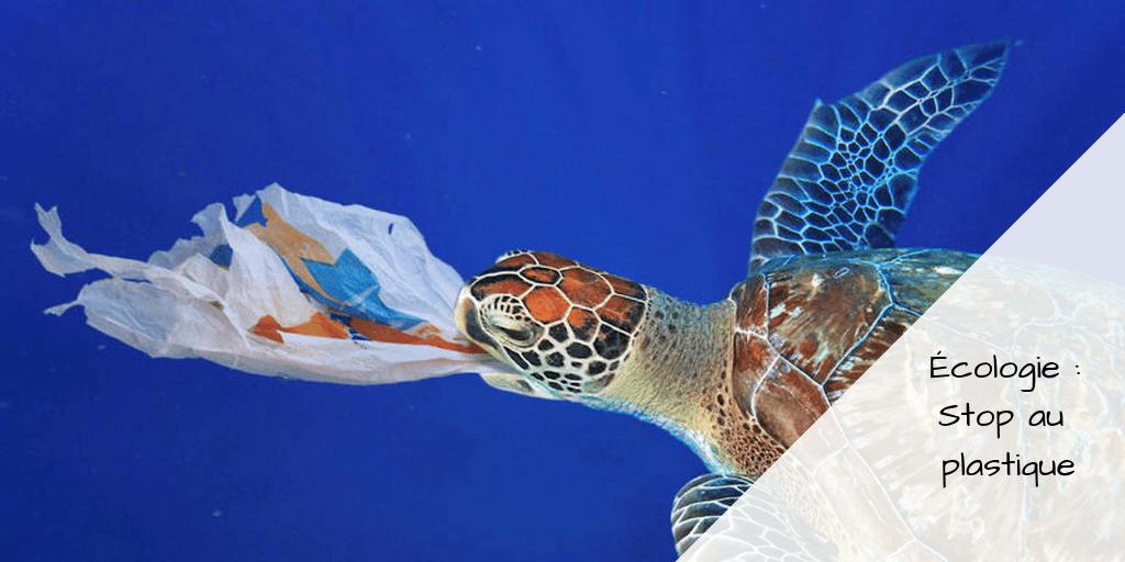 Écologie _ Stop au plastique