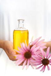 L'échinacée, par ses propriétés immunostimulantes et anti-bactérienne, est la plante phare de l'immunité et de l'hiver, pour petits et grands
