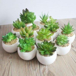 Lovely Set of 6 Artificial Mini Succulent Plants