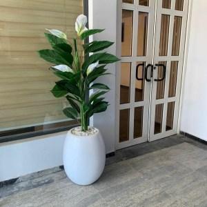 Anthurium Artificial Plant and Egg Pot