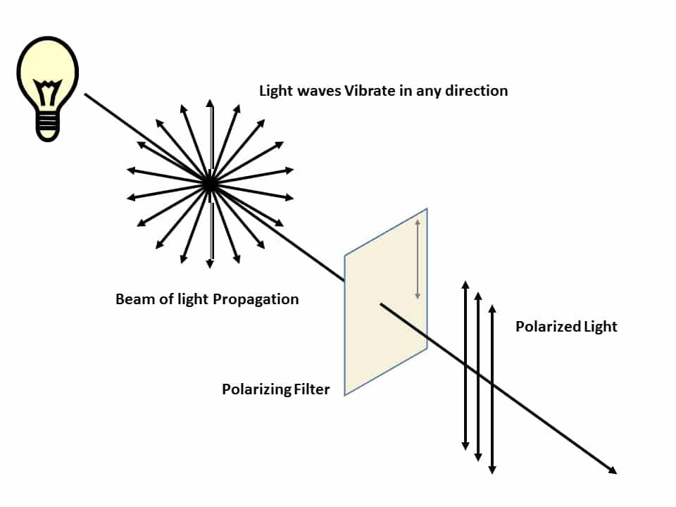 polarizing light