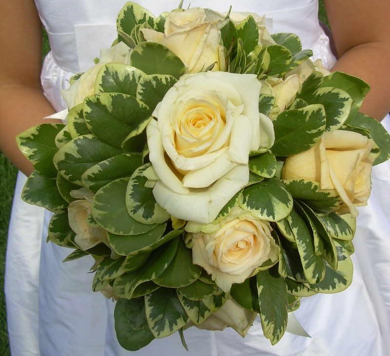 Питтоспорум в букете с розами фото
