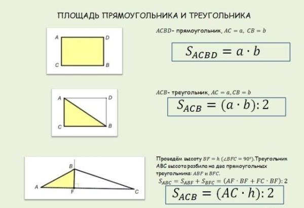 Как найти площадь треугольника в быту   Взгляд-Инфо