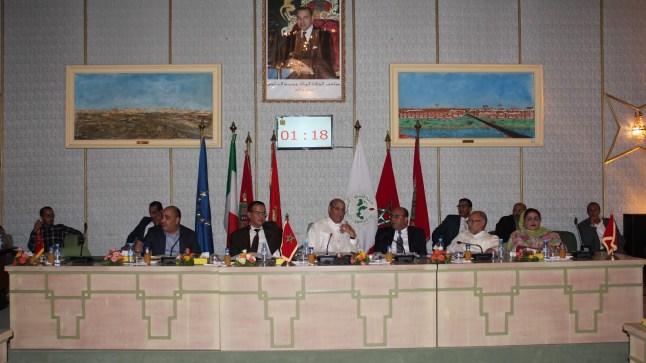 المجلس الجماعي لمدينة العيون يعقد جلسة حول 'إنفلونزا الخنازير'