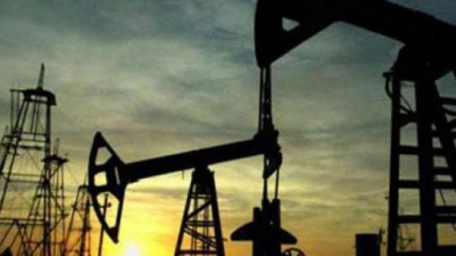 قطر تنقب عن البترول في 12 منطقة بسواحل طرفاية!