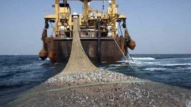 الحكومة المغربية تطلق مسلسل التصديق على اتفاقية الصيد البحري مع الاتحاد الأوروبي..