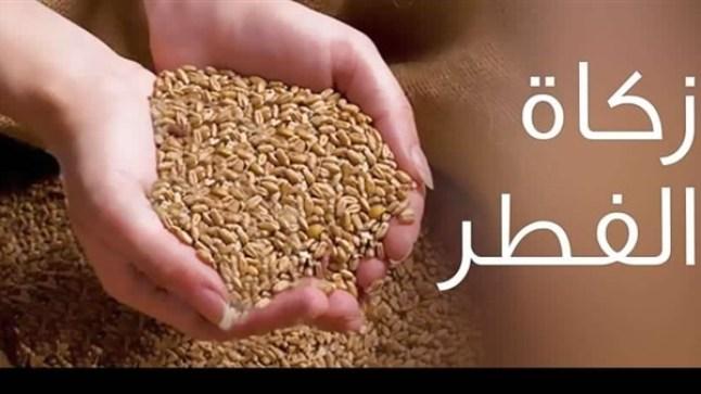 المجلس العلمي الأعلى يعلن مبلغ ومِقدار زكاة الفطر بالمغرب