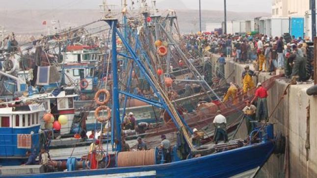 غضب عارم بسبب اعتداء رجل سلطة على بائعة سمك مسنة بميناء سيدي إفني