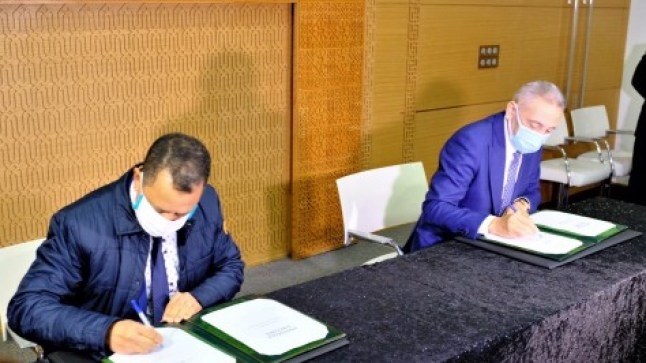 المغرب يتجه إلى احتضان أربعة مصانع جديدة للسيارات في طنجة ومكناس والقنيطرة والدار البيضاء