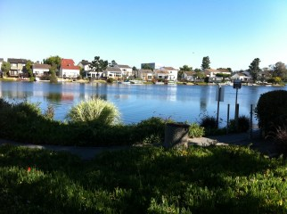 Great view of Redwood Shores, CA