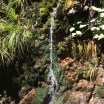 Found this waterfall while hiking Mount Tamalpais. #SFBayArea