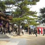 亀山八幡宮に初詣に行ってきました。
