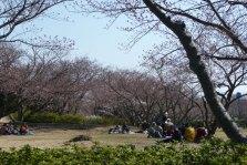 戦場ヶ原公園