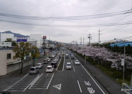 国道9号線、2号線の神鋼前の桜並木を見てきました