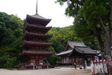 薔薇の花を見に広島に行ってきました。その7国宝の明王院五重塔