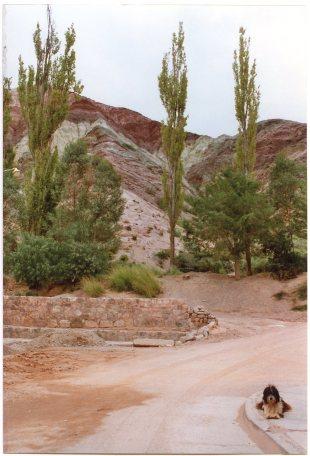 Purmamarqueño (veromendo 2005).