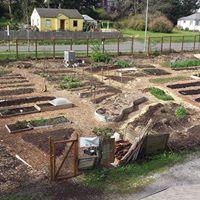 Expanding garden beds