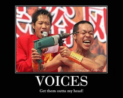 5 Funny Caption Pictures – Voices In My Head!