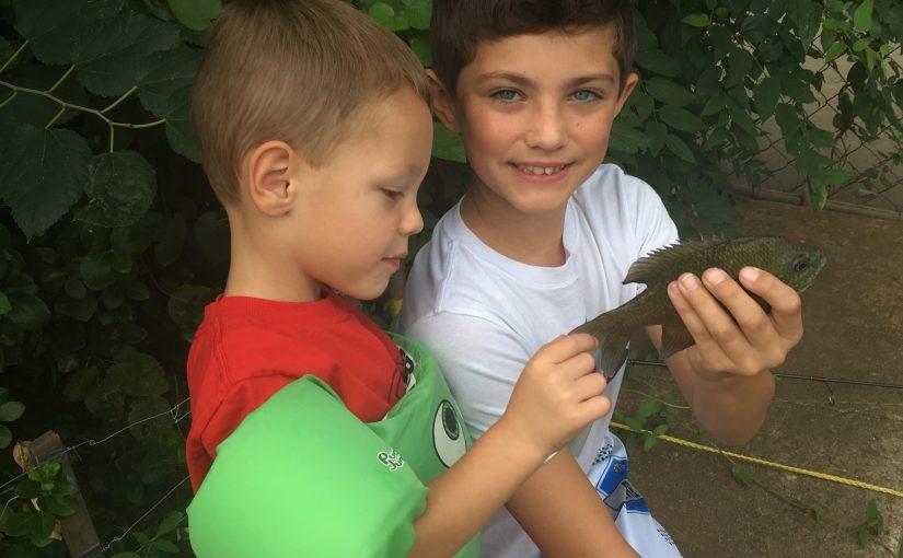 Talon and Beckett, Summer Fun