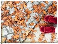 fall16_07