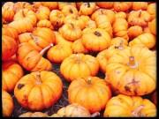 fall16_12