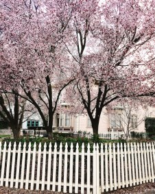 spring17_06