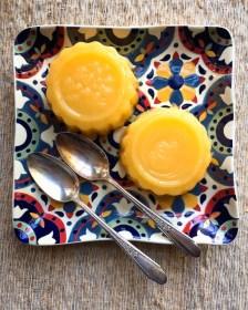 gelatina-laranja agar agar