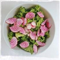 psico-salad
