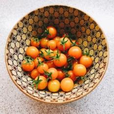 tomatos17_10
