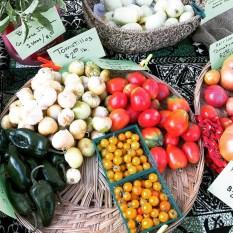 tomatos17_18