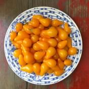 tomatos17_22