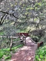 petaluma-trail_13