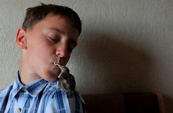 unusual-friendship-boy-sparrow-vadim-veligurov-5